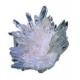 Zeolite 100 CPS